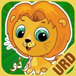 Flashcards Urdu Lesson