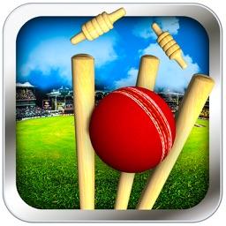 Cricket Run Out 3D