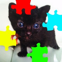 Codes for Cat's Jigsaw Puzzles Hack