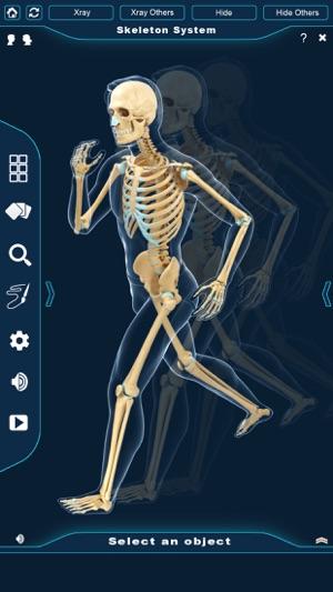 My Skeleton Anatomy on the App Store