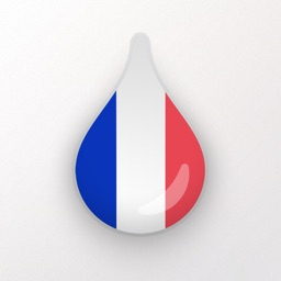 Learn French language & words with Drops