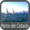 Ligurian S. Cetacean Sanctuary
