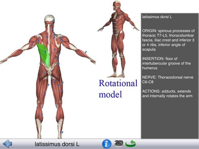 Visual Anatomy Lite on the App Store
