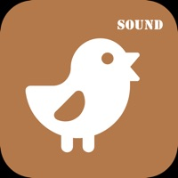 Codes for AnimalSound - English study Hack