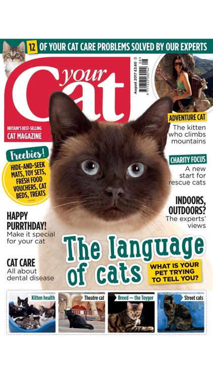 Your Cat – the UK's favourite cat magazine