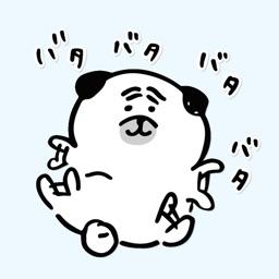 Pug's feelings