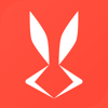 兔展-专业短视频剪辑编辑制作
