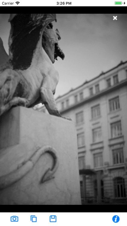 Black & White Camera
