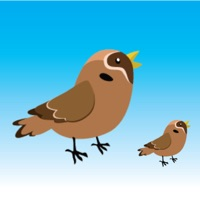 Codes for Bird Rescue Game Hack