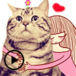Animated Funny Cat and Friends