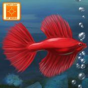Fish Tycoon app review