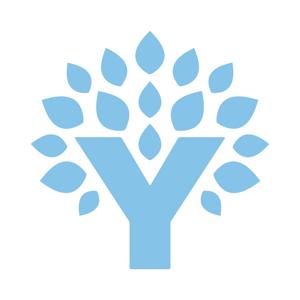 YNAB (You Need A Budget) ios app