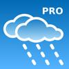 RegenVorschau Pro