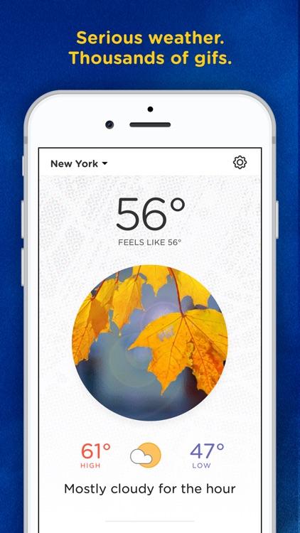 Basic Weather: Gifs & Weather
