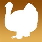 Appel de la Turquie icon