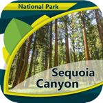 Sequoia Canyon N.Park
