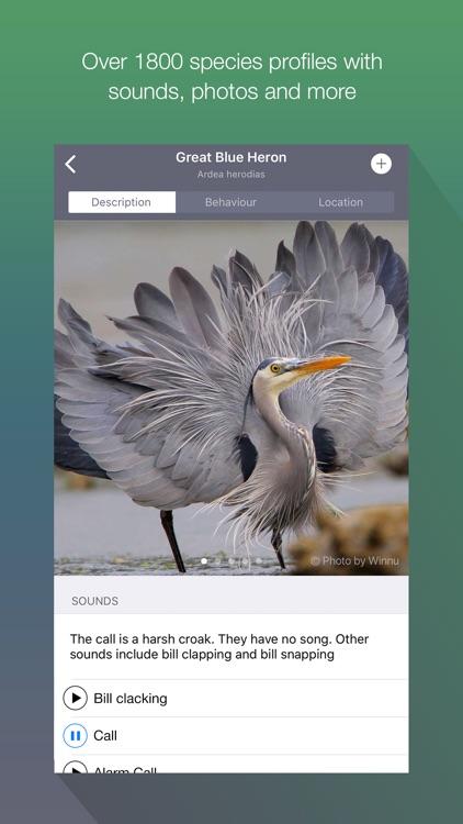 EyeLoveBirds: Bird sightings screenshot-0