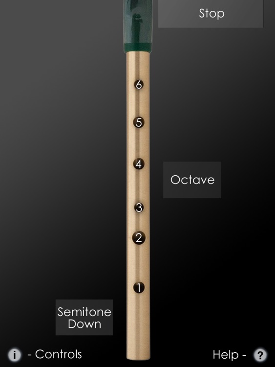 Tin Whistle Pro screenshot-2