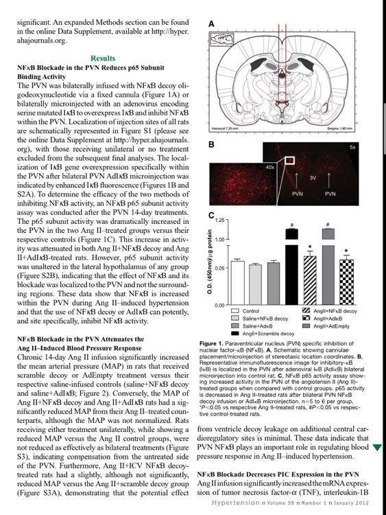 Hypertension Journal screenshot-4