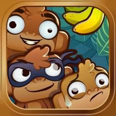 Activities of Rogue Monkeys