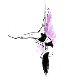 Pole Dance Fitness Aerial Arts