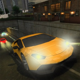 Expert Car Driving School 3D