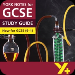 Frankenstein York Notes for GCSE 9-1