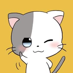 Cute Cat : Stickers
