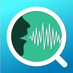 Voice Analyst: pitch & volume