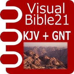 VB21 KJV+GNT(TEV/GNB)