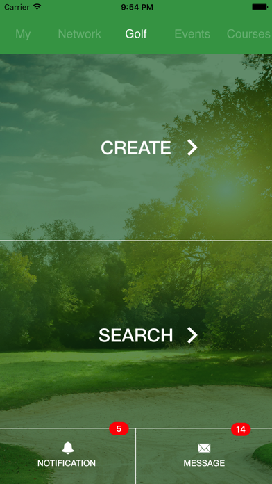 NetworkGolf screenshot one