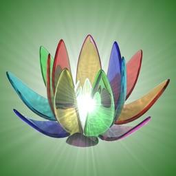 Zen Lamp