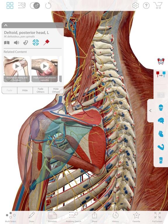 Muscle Premium Subscriptionのおすすめ画像2