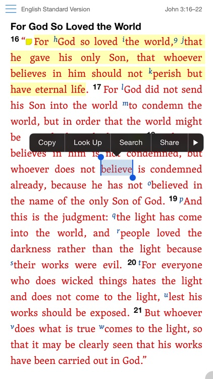 Verbum Catholic Bible Study screenshot-4