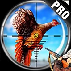 Activities of Pheasant Bird Hunting Pro