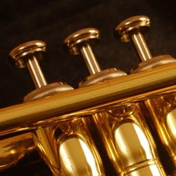 Trumpet Pro