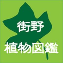 街野植物図鑑