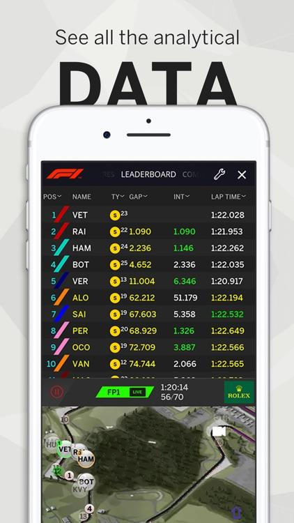 Formula 1® screenshot-3