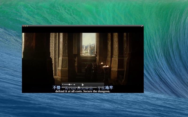 1Player Screenshot