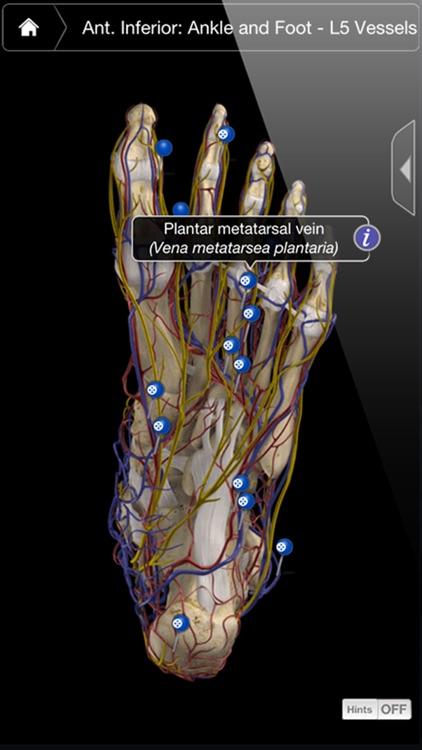 Ankle & Foot Pro III screenshot-3