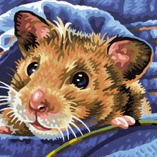Activities of Hamster Puzzles
