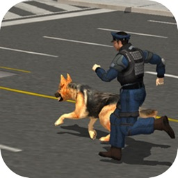 Police Dog Catch Crime