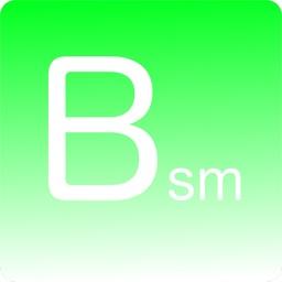 BSM Survey
