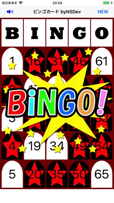 BingoCard byNSDevのおすすめ画像1