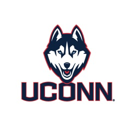 Connecticut Huskies Stickers Basic