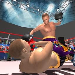 Ninja Punch Boxing Game