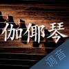 伽倻琴调音大师 - 快捷专业调音器