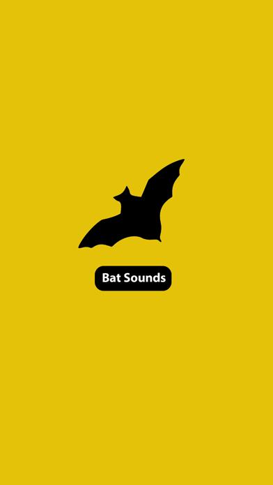 コウモリの音のおすすめ画像2