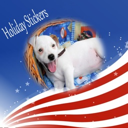 USA Holiday Stickers Pack