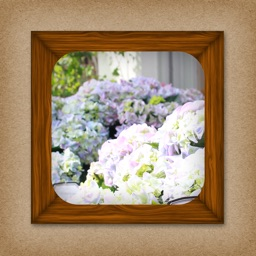 Wallpaper Photo Frame